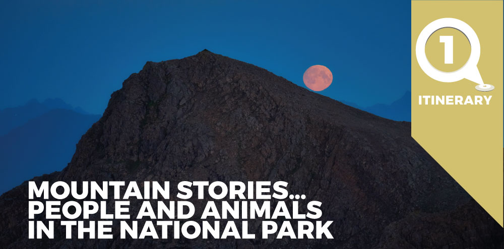 Mountain Stories... People and animals in the National Park